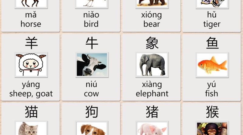 Learn Chinese Characters for Animals